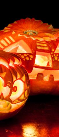 Halloween pumpkins on a black background